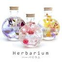 ハーバリウム ギフト 花 フラワー プレゼント プリザーブドフラワー 植物標本 ドライフラワー/誕生日(お祝い 結婚祝 …