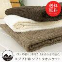 エジプト綿100% ソフト タオルケット シングル 140×200cm コットン 綿100% ワッフル調 ふっくら へたりにくい 涼感…