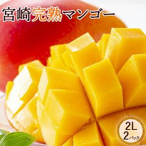 宮崎完熟マンゴー 2L マンゴー 完熟マンゴー 宮崎マンゴー 大玉 果物 くだもの フルーツ 高級フルーツ お取り寄せ 美味しい フルーツギフト 父の日ギフト 父の日プレゼント 母の日ギフト 母