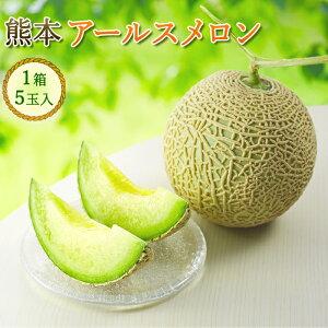 送料無料 熊本産 アールスメロン 1箱5玉入り 8kg以上 大玉 くまもと メロン めろん マスクメロン 最高級 フルーツギフト フルーツ 高級フルーツ 甘い 果物 くだもの 高級 熊本県 ご当地 お取り