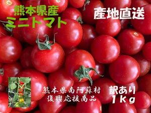 【順次発送中】 送料無料 クール便発送 熊本県熊本県産 産地直送 ミニトマト プチトマト 1Kg トマト とまと 国産トマト お取り寄せ野菜 美味しい おいしい お取り寄せ 国産 日本製 訳あり商