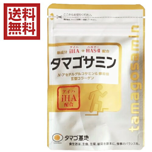 【D会員4倍】タマゴサミン 90粒