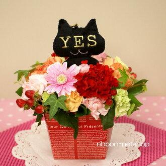 카오니・데・테르날 「YESorNO」고양이의 마스코트 밀크 BOX 생화 FL-MD-185