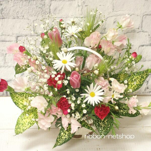 【2月限定】【送料無料】デザイナーにおまかせ♪マーガレットと季節のお花のフラワーアレンジメントFL-2GT-5