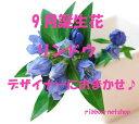 Img56901856