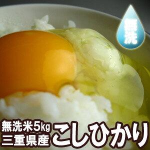 送料無料★【無洗米】令和2年三重県産コシヒカリ5kg★