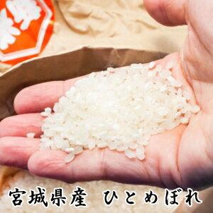 30年産[送料無料]宮城県登米産ひとめぼれ20kg (5kg×4) ポリ袋仕様[出荷当日精米]白米または無洗米要選択【あす楽対応_近畿】
