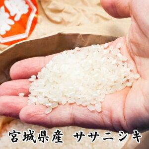 売り尽くし!29年産【送料無料】宮城県登米産ササニシキ 25kg[白米/無洗米_選択可能]小分け可[選択可能]【あす楽対応_東北-関西】