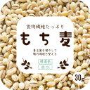 お試し送料無料 サンプル 米 雑穀 雑穀米 もち麦 30g 送料無料 βグルカン含有 もちむぎ ゆでもち麦 (カナダ産もしく…