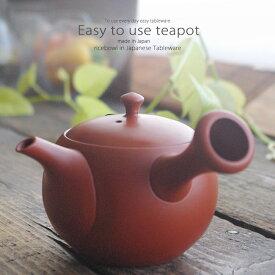 和食器 常滑焼 お茶 朱泥小丸無地 急須 ティーポット セラミック 茶漉し付 茶器 食器 緑茶 紅茶 ハーブティー おうち うつわ 陶器 日本製