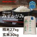 平成28年度産 特別栽培米 THE GRAND みずかがみ 精米27kgまたは玄米30Kg