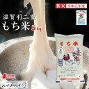 【令和元年度産】【新米】特別栽培米 羽二重もち米 5kg