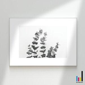 ユーカリ モノトーン プリント ポスター [ A3 ]北欧 北欧風 北欧インテリア 北欧テイスト ポポラス 雑貨 モノクロ 白黒 ドライフラワー シンプル 自然 写真 フレーム ナチュラル カフェ インテ