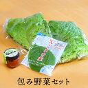 包み野菜セット サンチュ エゴマ チシャ味噌 焼肉セット 【李朝園】