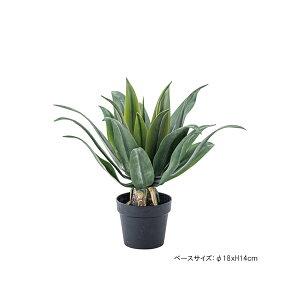 フェイクグリーン 人工観葉植物 人工植物 観葉植物 造花 鉢植え インテリアグリーン インテリア 装飾 アガベ GRN-14