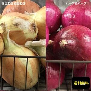愛知県一宮市産【赤玉ねぎ サラダ玉ねぎ & 玉ねぎ 箱込5kg】【無農薬】【送料無料】お取り寄せグルメ 今が旬のお野菜です