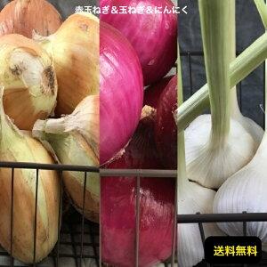 愛知県一宮市産【赤玉ねぎ2kg 玉ねぎ 2kg にんにく 国産 500g 計箱込5kg】【無農薬】【送料無料】お取り寄せグルメ 今が旬のお野菜です