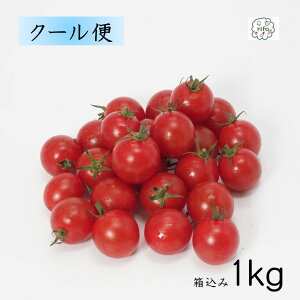 限定クーポン配布中 ポイント2倍 国産 箱含む1キロ 減農薬 新鮮 農家 直送 送料無料 クール便 完熟ミニトマト 完熟プチトマト フルーツのように手軽に野菜を摂ろう♪ お中元 野菜