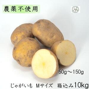訳あり 泥付き 国産 じゃがいも Mサイズ 箱込10kg 無農薬 野菜 自然栽培 送料無料 買い置き