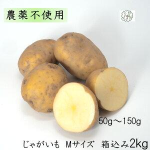 訳あり 泥付き国産 じゃがいも Mサイズ 箱込2kg 無農薬 野菜 自然栽培 送料無料 買い置き