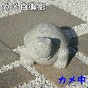 御影石 カメ(中)カメ 亀 置物 置き物 玄関 エントランス 庭 ガーデニング ガーデン インテリア オーナメント