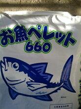 [送料無料][魚粕][アミノ酸][肥料][ガーデニング][家庭菜園][有機栽培][有機肥料]純国産魚粕][イワシ][アジ][サバ][マグロ]【お魚ペレット660】有機100%20Kg