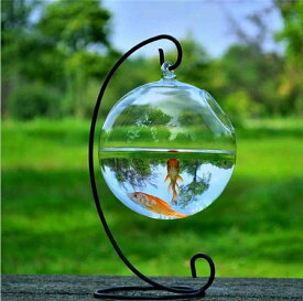 金魚鉢 丸型 直径12cm 鉄ハンガー 高さ23cm 花瓶 花器 フラワーベース ガラスベース ガラスボトル 水栽培