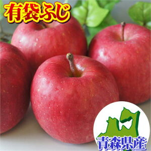 家庭用『有袋ふじ』10kgダンボール・フルーツキャップ詰(約32〜40玉入)