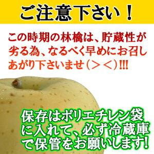 【予約商品】青森県産「訳あり」きおう3kg詰(8〜13玉入)※商品は9月5日頃から発送開始予定!