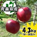 【早期割引予約】訳あり『紅玉』4.3kgダンボール・モールドパック詰(約18〜28玉入)※10月6日より順次出荷