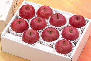 【おすすめギフト】糖度13度以上「サンふじ」家庭用3kgダンボール・フルーツキャップ詰(約9〜12玉入)