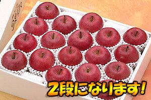 【おすすめギフト】糖度13度以上「サンふじ」最高級品10kgダンボール・フルーツキャップ詰(32〜36玉入)