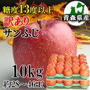 【訳あり】【糖度13度以上】青森県産「サンふじ」10kgダンボール・モールドパック詰(約28〜46玉入)