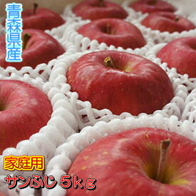 糖度13度以上「サンふじ」家庭用5kgダンボール・フルーツキャップ詰(約16〜20玉入)