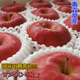 糖度13度以上「サンふじ」最高級品5kgダンボール・フルーツキャップ詰(16〜18玉入)