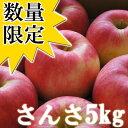 【予約商品】青森県産「訳あり」さんさ5kg(20〜25玉入)