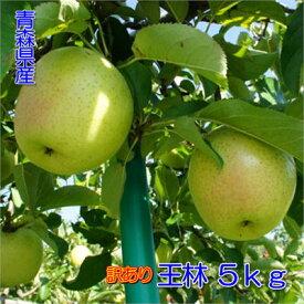 【予約】【訳あり】甘い青りんごの代表格!甘さと香りの『王林』5kgダンボール・モールドパック詰(約14〜20玉入)