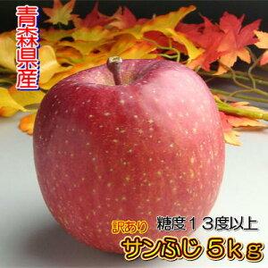 【訳あり】【糖度13度以上】青森県産「サンふじ」5kgダンボール・モールドパック詰(約14〜23玉入)