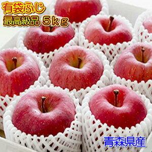 贈答用『有袋ふじ』最高級品5kgダンボール・フルーツキャップ詰(約16〜18玉入)
