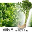 【送料無料】三関セリ約50g×10束(約500g)