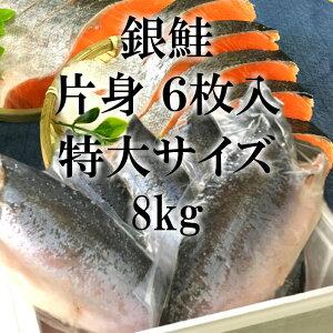 【送料無料】銀鮭 片身 フィーレ (約1300g×6入)業務用  やまいち干物 父の日 母の日 ギフト 贈り物 【鮭 甘塩銀鮭 サーモン 切り身 鮭切り身 甘塩鮭切り身 魚 塩焼き ご飯のお供 お弁当 酒