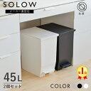 【メーカー直販店】【2個セット】SOLOW ソロウ ペダルオープンツイン 45L 2個セット ゴミ箱 カップボード 棚下 カウン…