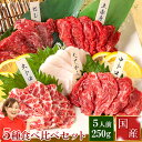 馬刺し 全商品ポイント5倍 父の日 母の日 霜降り 大トロ 上赤身 熊本 国産 肉 送料無料 5種食べ比べセット 5人前 250g…