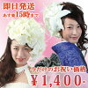 """In Erika-style! A lily headdress! Take it, and a head corsage wedding ceremony wedding silk flower art flower artificial flower photograph cures a color """"medium size"""" (Casablanca); wedding headpiece coming-of-age ceremony Sawajiri"""