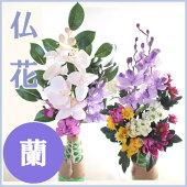 ■枯れない仏花(蘭)お供えお仏壇お墓【あす楽対応】