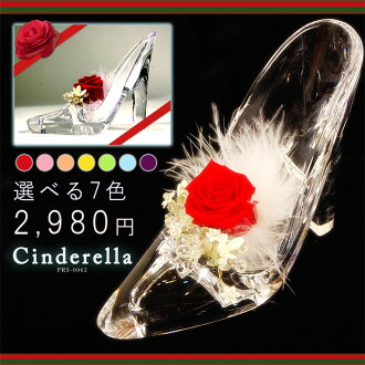 Preserved Cinderella glass slipper