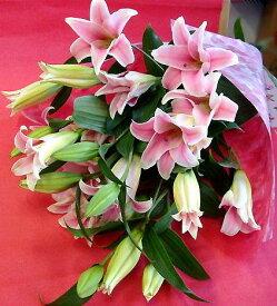 遅れてごめんね 母の日 ゆり 花束 ピンク 花 プレゼント豪華さと香りの百合 フラワーギフト