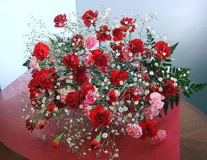 母の日 カーネーション 花束 ボリューム満点かすみ草 ミックス