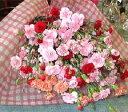 母の日 プレゼント お母さんもびっくり50本!カ−ネーション 花束母の日・送料無料