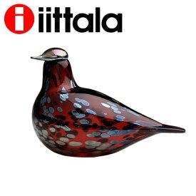 iittala イッタラ Birds by Toikka バード ルリコマドリ ルビーバード クランベリー 210×130mm Ruby bird cranberry